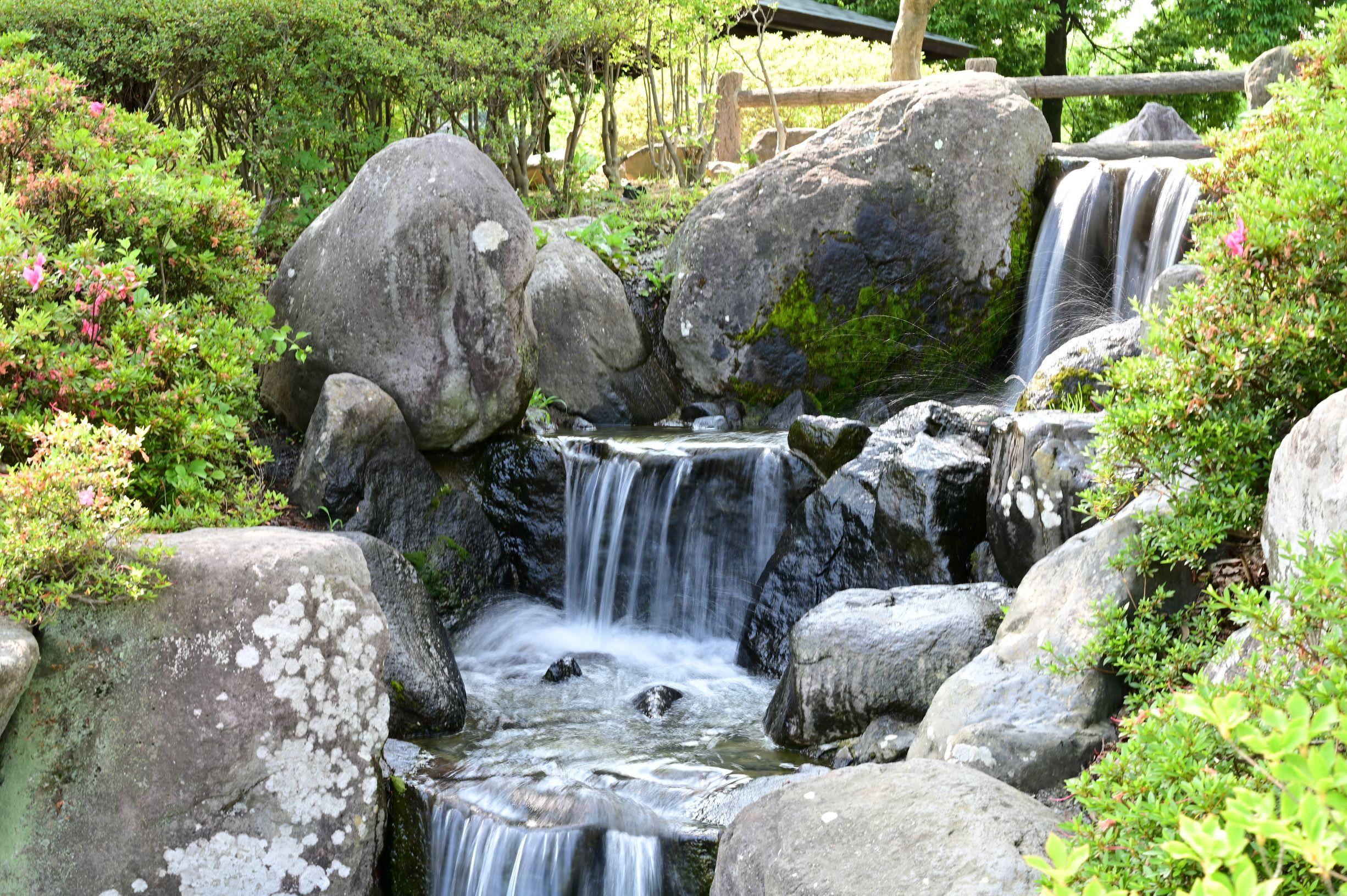 ニコン Z6とNIKKOR Z 50mmF1.8Sで撮った信州松本あがたの森公園