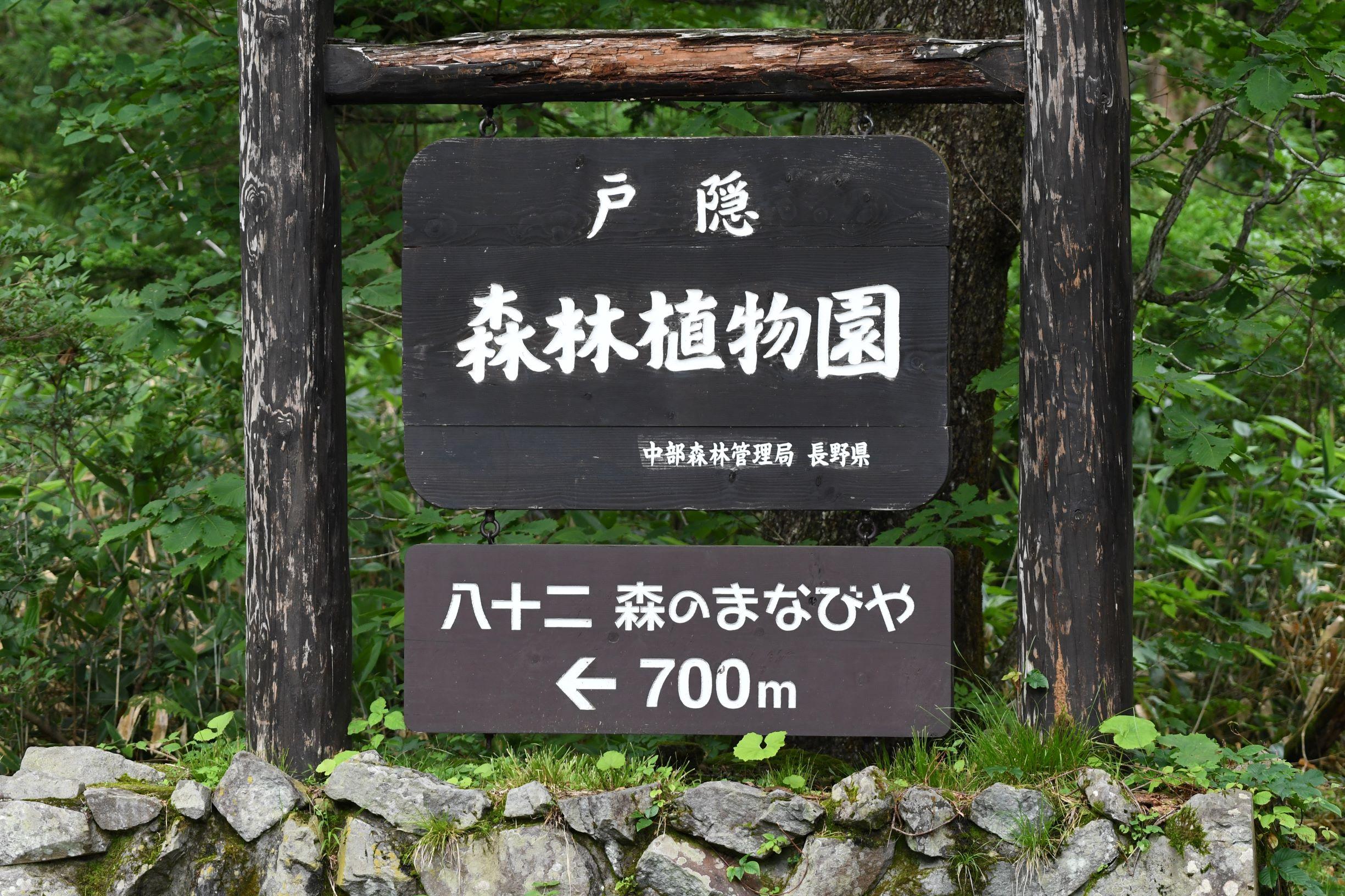 信州長野 戸隠森林植物園に行って撮影してきました