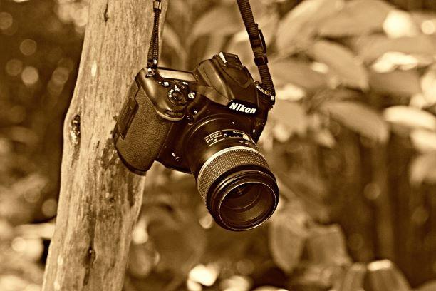 カメラを購入する時に無金利のショッピングローンをおすすめする理由